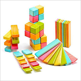 Magnetic Block Set by Tegu