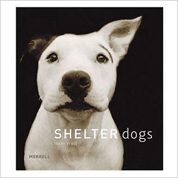 Shelter Dogs Book for ASPCA