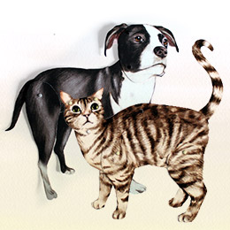 Dog-ese & Cat-ese: Learn To Speak Their Language