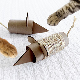 Do Unto Animals: Cardboard Mouse Cat Toy
