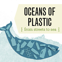Make Nice Mission: Oceans of plastic