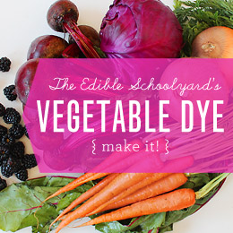 Make Nice Mission: Vegetable Dye