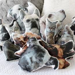 Pet Pillows